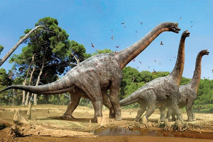 В поисках новых видов динозавров!